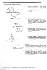 Zestaw nerki i stres nadnerczy 2